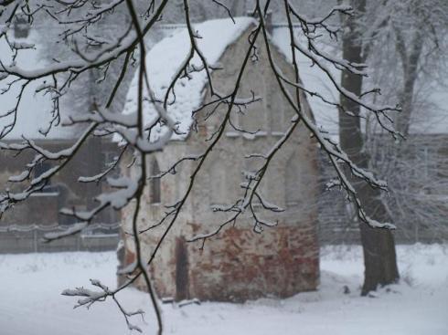zza osnieżonych gałęzi ...